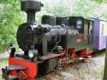 Dampf/187555/luise-vor-personenzug Luise vor Personenzug