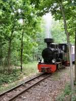 Dampf/187579/parkeisenbahn-in-der-wuhlheide Parkeisenbahn in der Wuhlheide